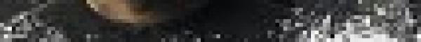 《白鹿原》更新至第1集 张嘉译/何冰/秦海璐/刘佩琦/雷佳音/翟天临/邓伦/李沁